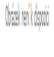 Záclona kusová - Déšť 220x200 cm (bílá)